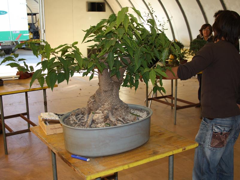 workshop 9-10-2011 007