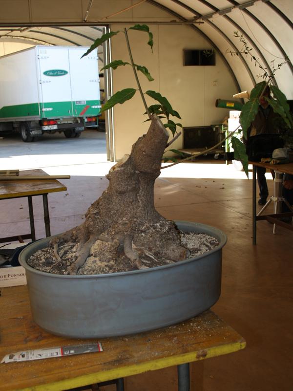 workshop 9-10-2011 014