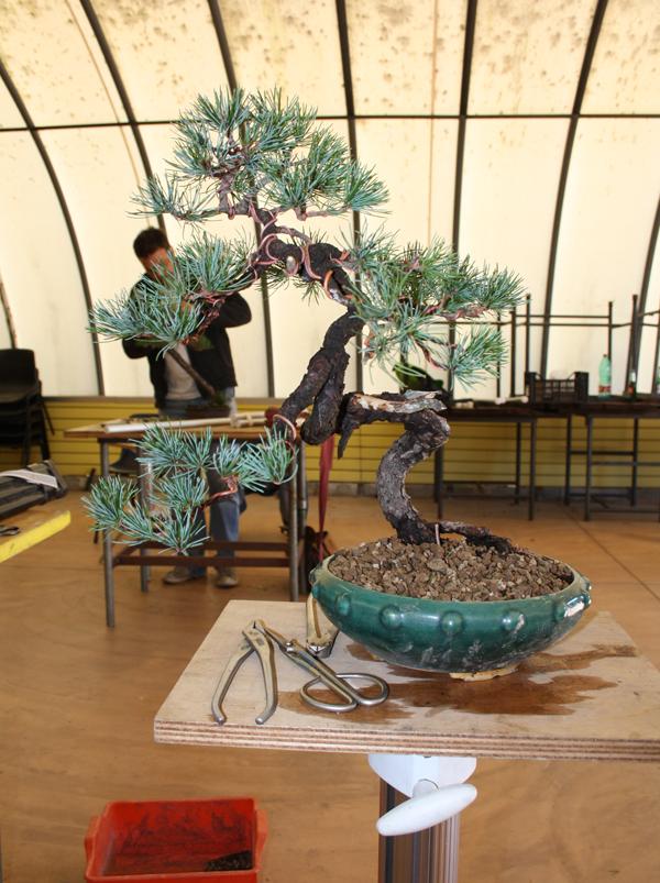 workshop 9-10-2011 026