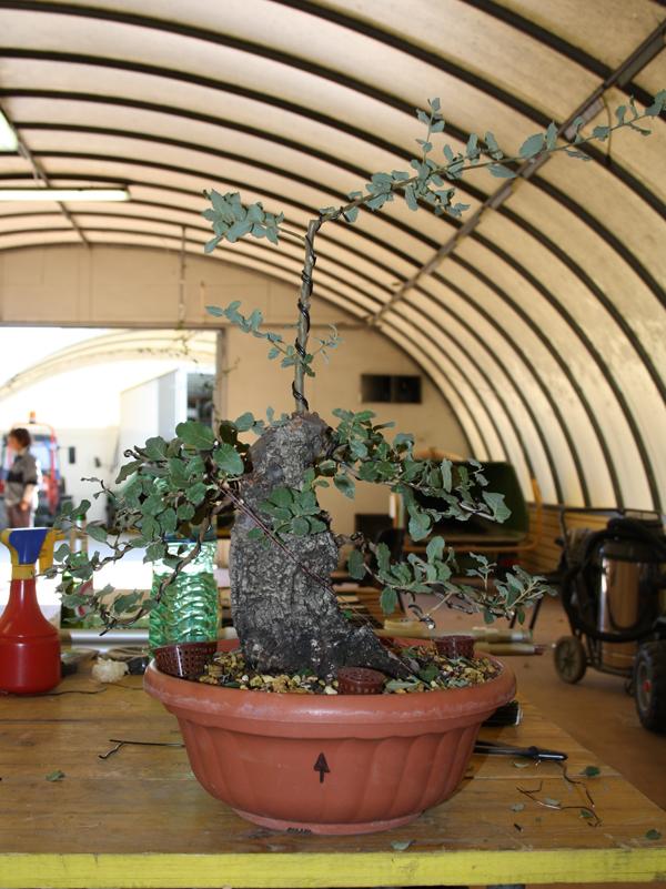 workshop 9-10-2011 030